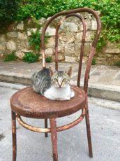 Naturaalne Kreeta külaelu